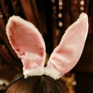 ハロウィン バニー バニードレス コスプレ うさぎ ウサギ コスチューム 衣装 不思議の国のアリス コスプレ衣装 メイド アキバ-Halloween-trw0725-0023