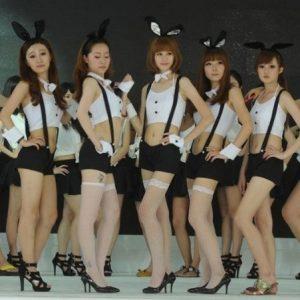コスプレ衣装 コス バニー アニマル コスチューム ハロウィン メイド服 ウサギ うさ耳-Halloween-trw0725-0024